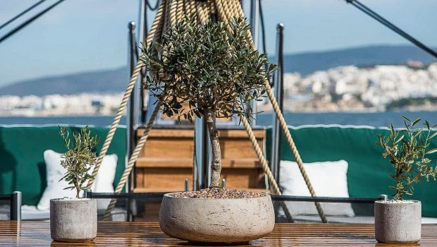 arktos motor sailer aft table (4) min -  Valef Yachts Chartering - 2296