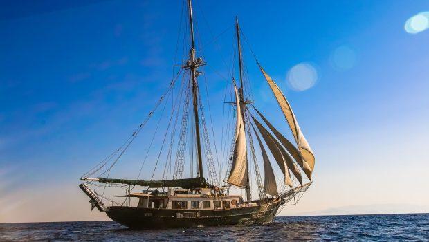 arktos motor sailer sailing (10) min -  Valef Yachts Chartering - 2233