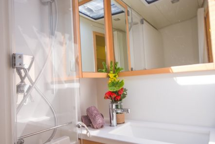 lucky clover catamaran bath (3) -  Valef Yachts Chartering - 2453