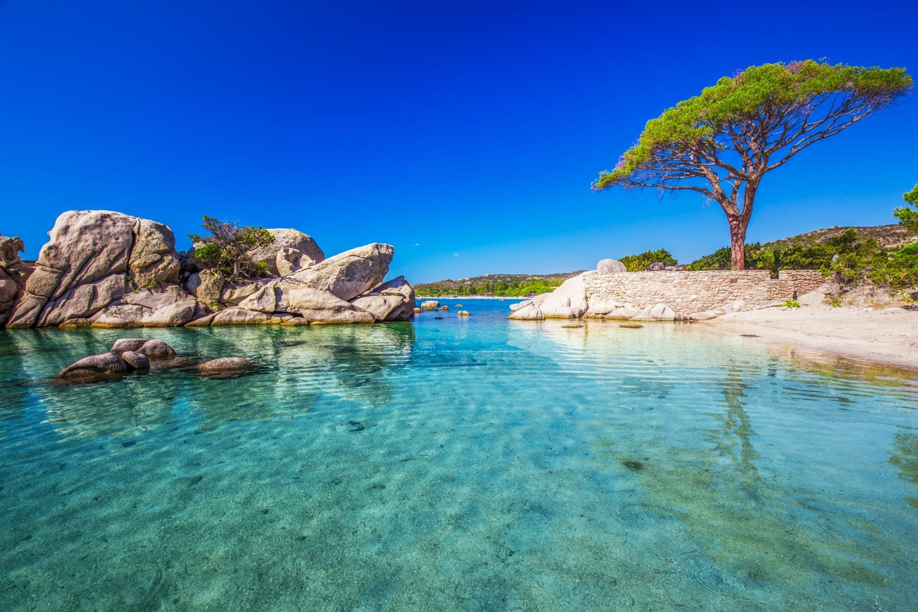 Corsica beach crystal waters
