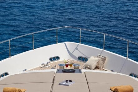 elite-motor-yacht-fore (2)