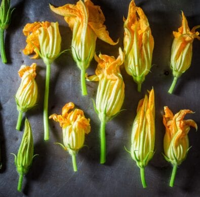 zucchini blossoms on a spread
