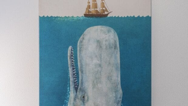 pi2 catamaran art (Custom) min - Valef Yachts Chartering